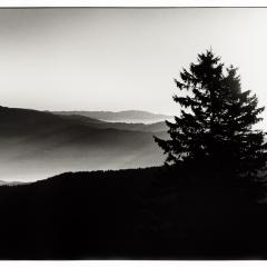 Schwarzwald2-1200